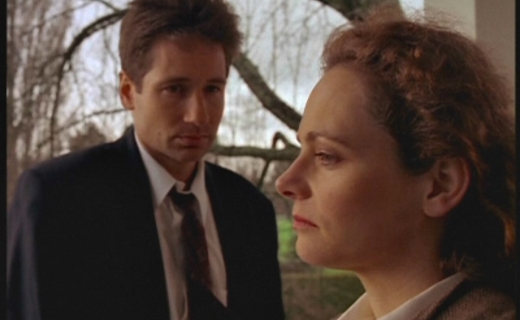 The X-Files Season 2 Episode 16 - Colony (1)