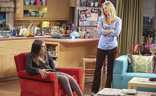 The Big Bang Theory Season 5 Episode 2 - The Infestation Hypothesis