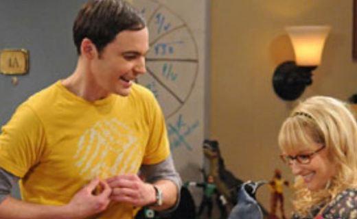 The Big Bang Theory Season 5 Episode 9 - The Ornithophobia Diffusion