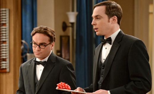 The Big Bang Theory Season 5 Episode 24 - The Countdown Reflection