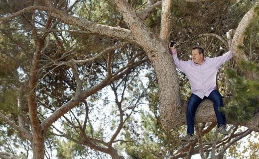Modern Family Season 4 Episode 9 - When a Tree Falls