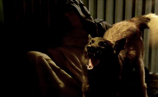 Criminal Minds Season 9 Episode 18 - Rabid