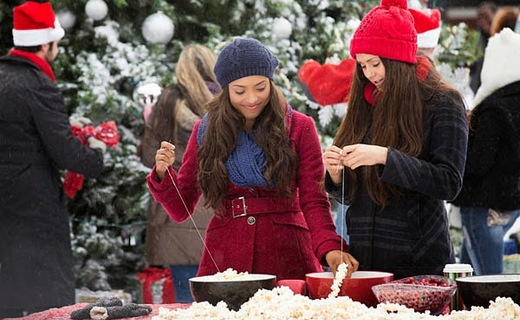The Vampire Diaries Season 6 Episode 10 - Christmas Through Your Eyes