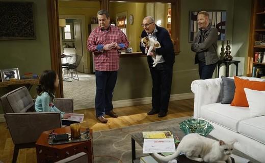 Modern Family Season 6 Episode 13 - Rash Decisions