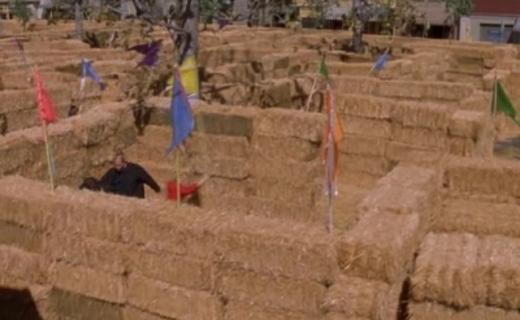 Gilmore Girls Season 7 Episode 18 - Hay Bale Maze