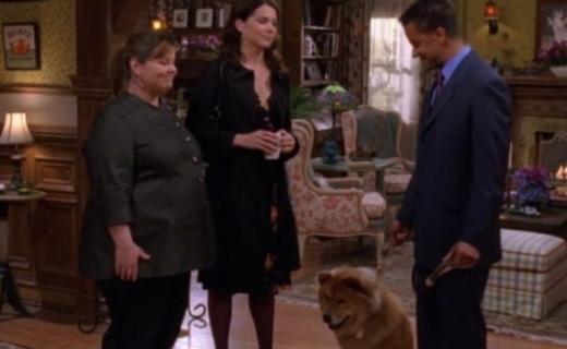 Gilmore Girls Season 7 Episode 14 - Farewell, My Pet
