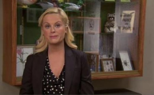 Parks and Recreation Season 2 Episode 19 - Park Safety